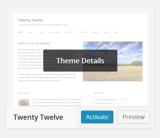 Activating WordPress theme